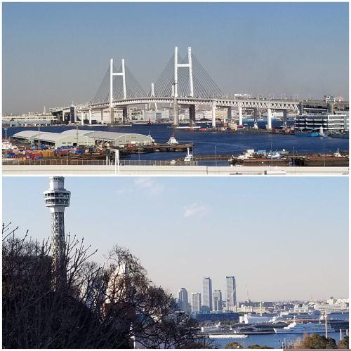 間違いが楽しい 学大から横浜へ_e0016828_14183789.jpg