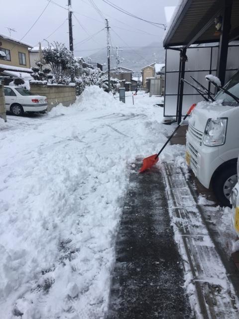 湿り雪_f0032130_09534818.jpeg