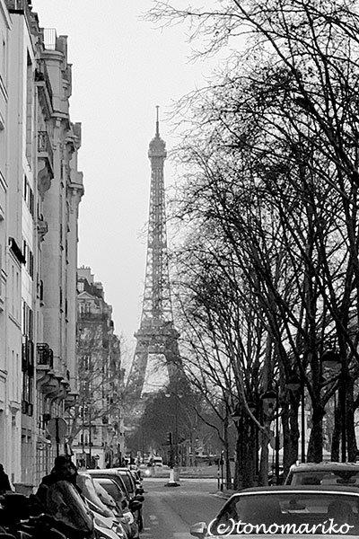 パリの何気ない日々の美しい風景_c0024345_21245442.jpg