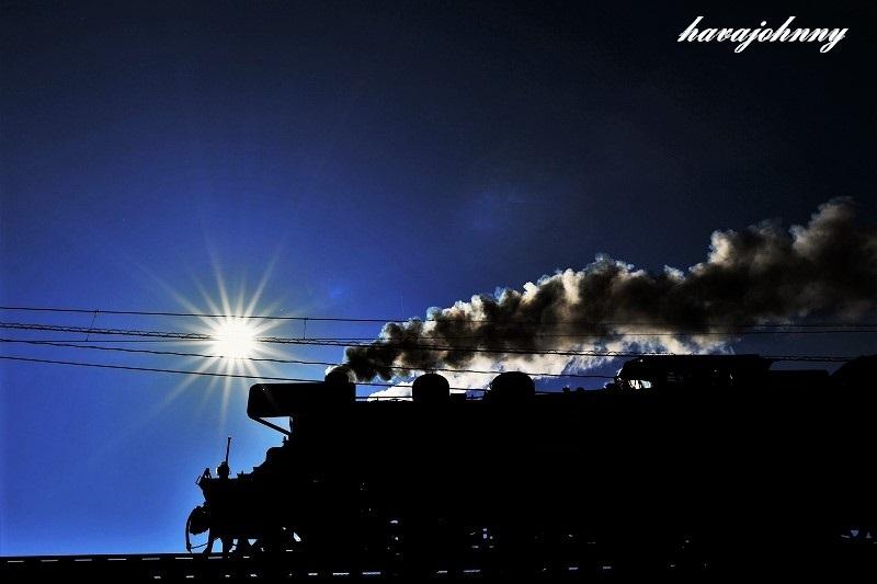 魅惑の冬の大井川_c0173762_19064402.jpg