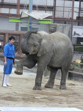 砥愛ちゃん  VS.濱ちゃん_e0272869_18424321.jpg