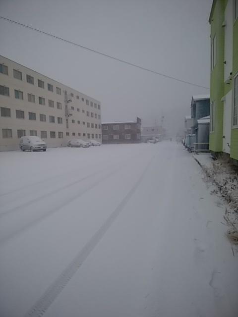 これから冬本番_a0167308_23200850.jpg
