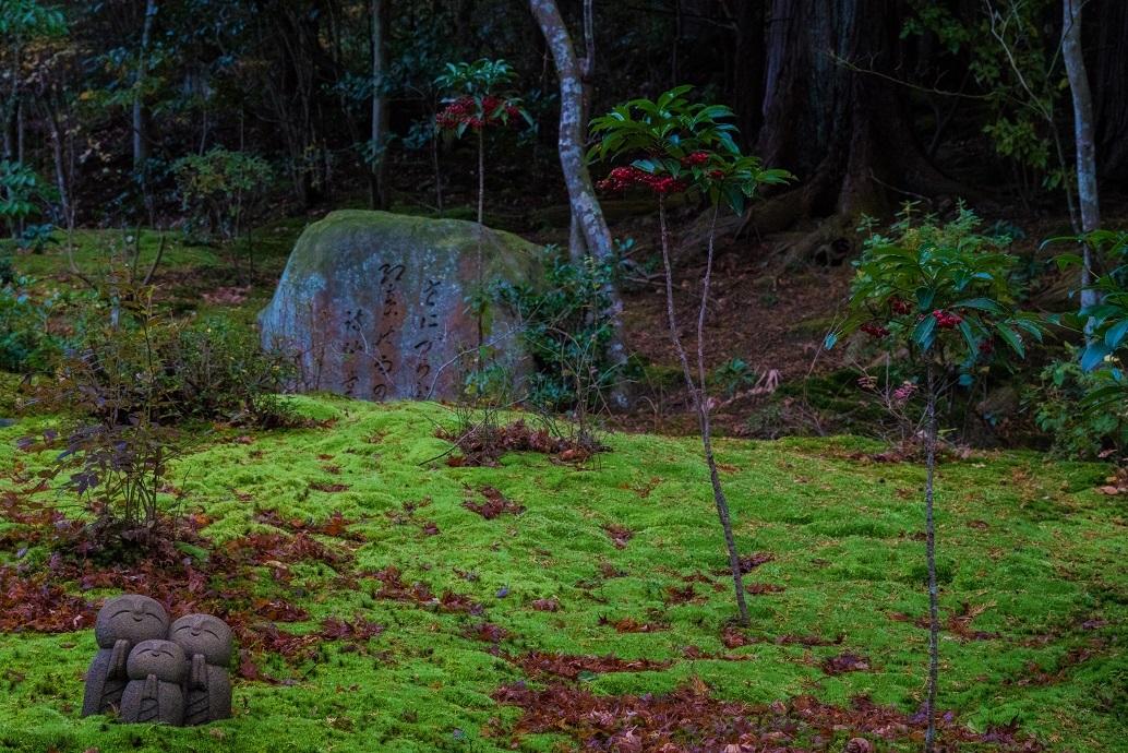 冬の詩仙堂_e0363038_11591590.jpg
