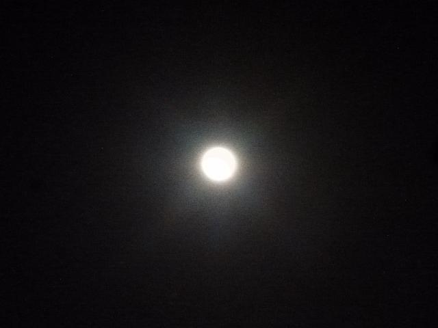 月_e0230141_09084562.jpg