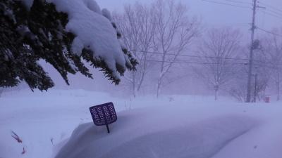 1月24日(木) 雪   -5度_f0210811_10232097.jpg