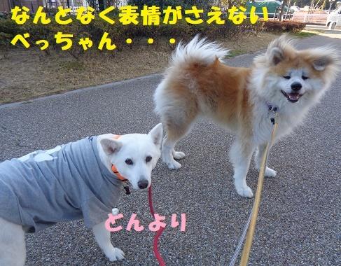 f0121712_00232516.jpg