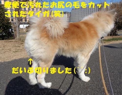 f0121712_00323691.jpg
