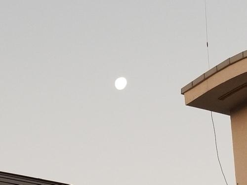 疑ってみなければ 日韓レーダー照射問題の真相は?_e0016828_11103296.jpg