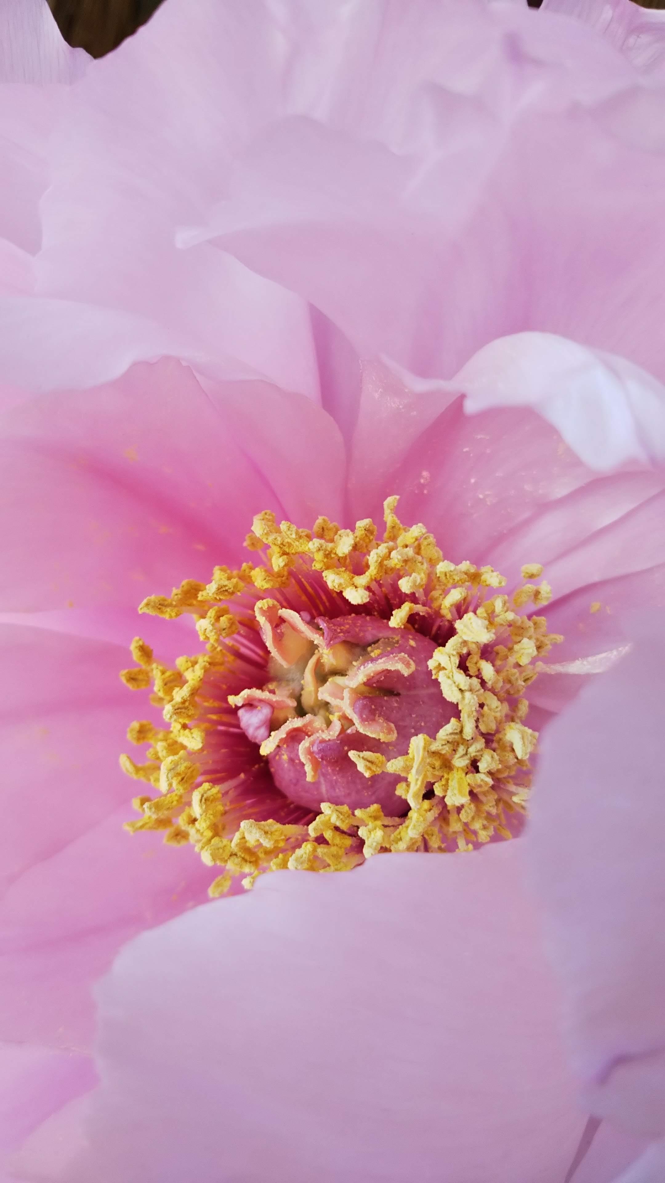 春の兆し_b0324291_00111971.jpg