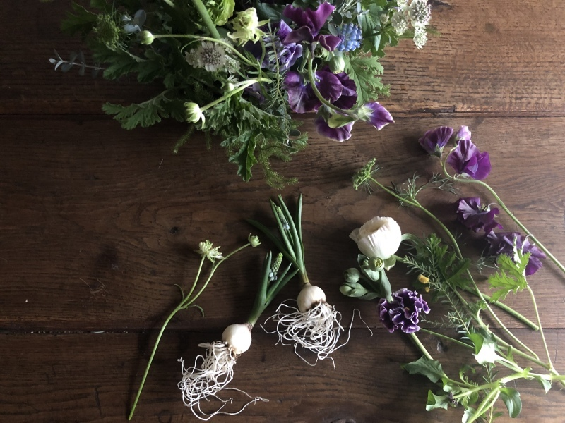 2月のハナクラス  春の花とミモザ_d0104091_17290053.jpeg