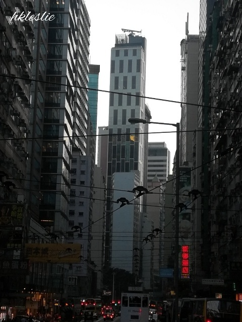 香港電車(トラム)@筲箕灣總站→金鐘港鐵站_b0248150_08085635.jpg