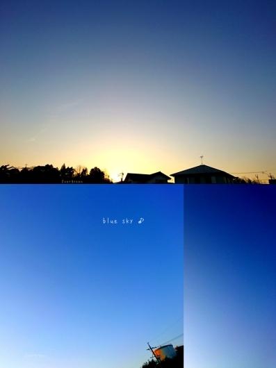 1/25(金)      今朝の空とみかん。_d0362666_17353518.jpg
