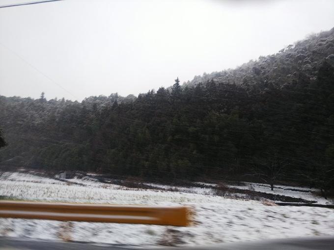 冬です!   やはり冬でした!_b0239402_16154117.jpg