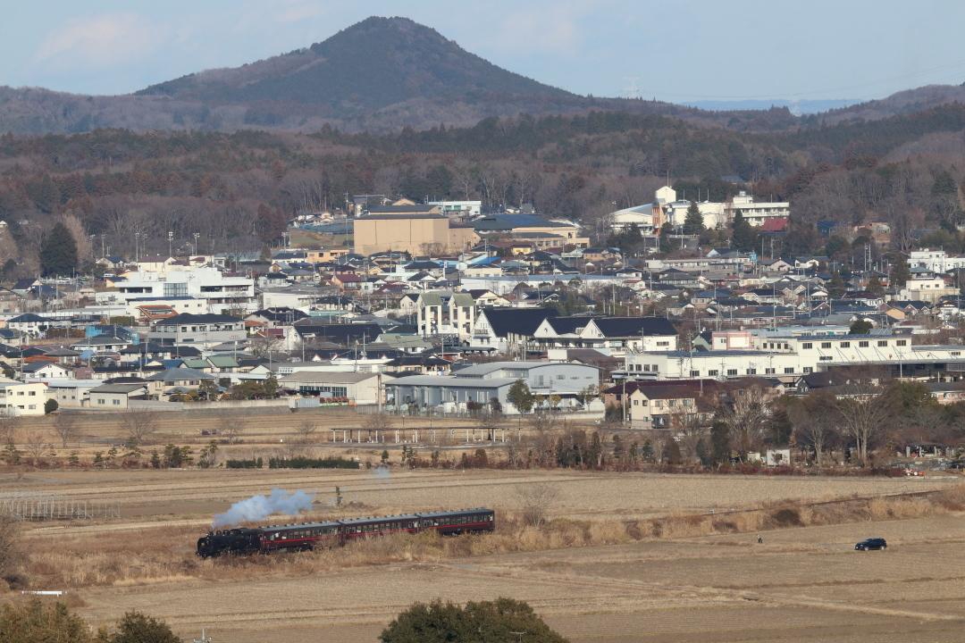 芳賀富士を背景に冬枯れの築堤を走るC11 - 2019年冬・真岡鐵道 -_b0190710_16201219.jpg