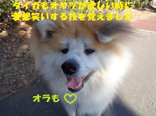 f0121712_01590721.jpg
