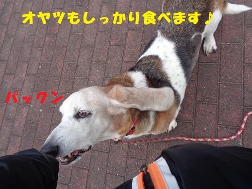 f0121712_02081051.jpg