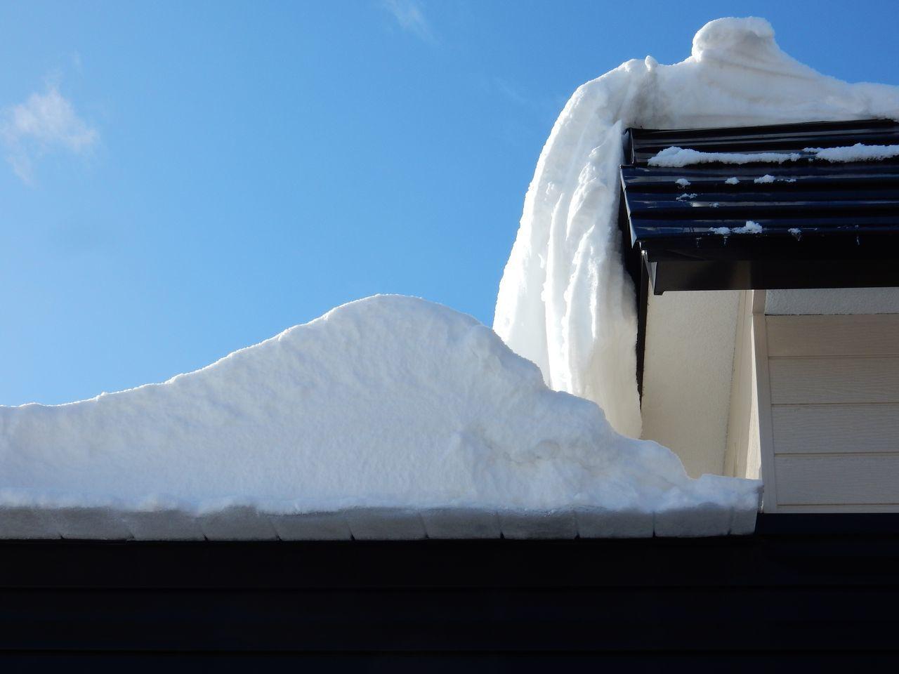 真冬日ではありましたが_c0025115_22021141.jpg