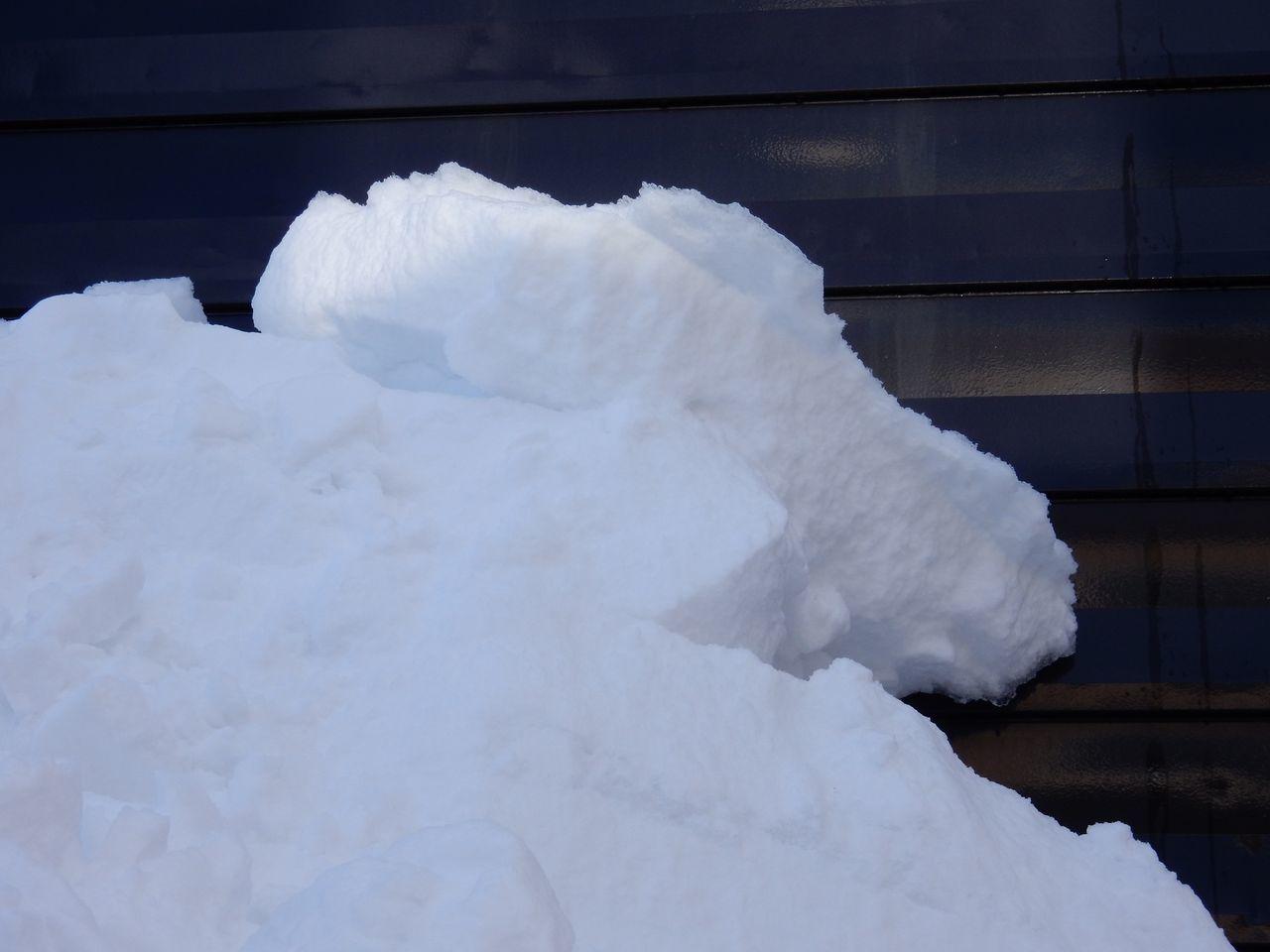 真冬日ではありましたが_c0025115_22051823.jpg