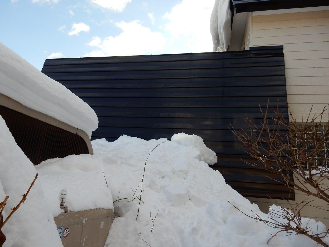 真冬日ではありましたが_c0025115_22063694.jpg