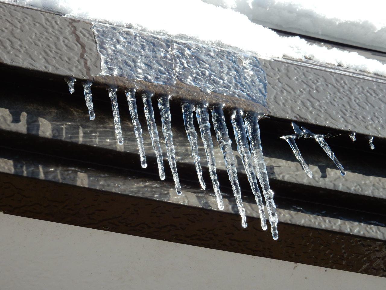 真冬日ではありましたが_c0025115_22083102.jpg