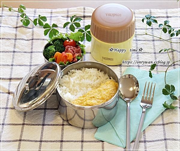 カレーライス弁当とヨーグルト酵母♪_f0348032_17464015.jpg