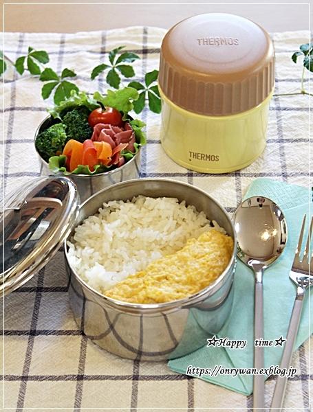カレーライス弁当とヨーグルト酵母♪_f0348032_17464700.jpg