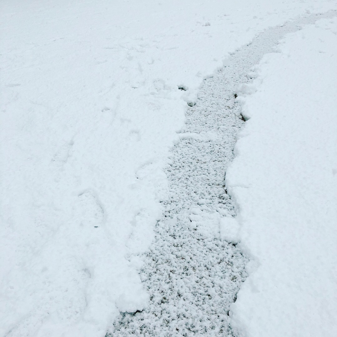 雪の土曜日_b0072234_15520825.jpeg