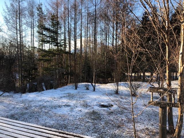 うっすらと雪の朝_f0019247_1159432.jpg