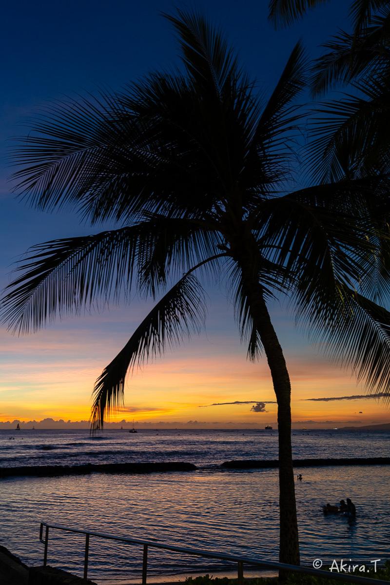 ハワイ -16-_f0152550_23395533.jpg