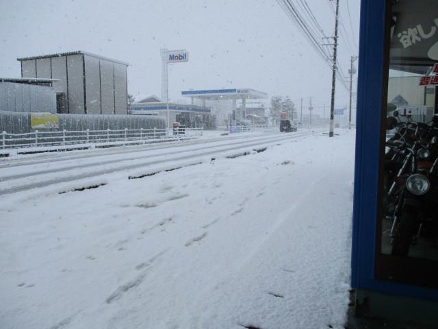 新潟市北区の積雪情報_c0080863_09464528.jpg