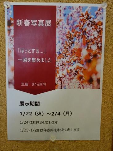 ラウンジ 新春写真展_e0190287_17255595.jpg