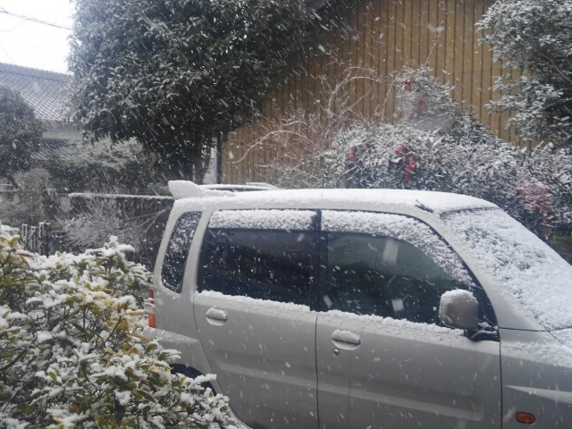 『vol.3703 2019年初雪』_e0040714_01172843.jpg