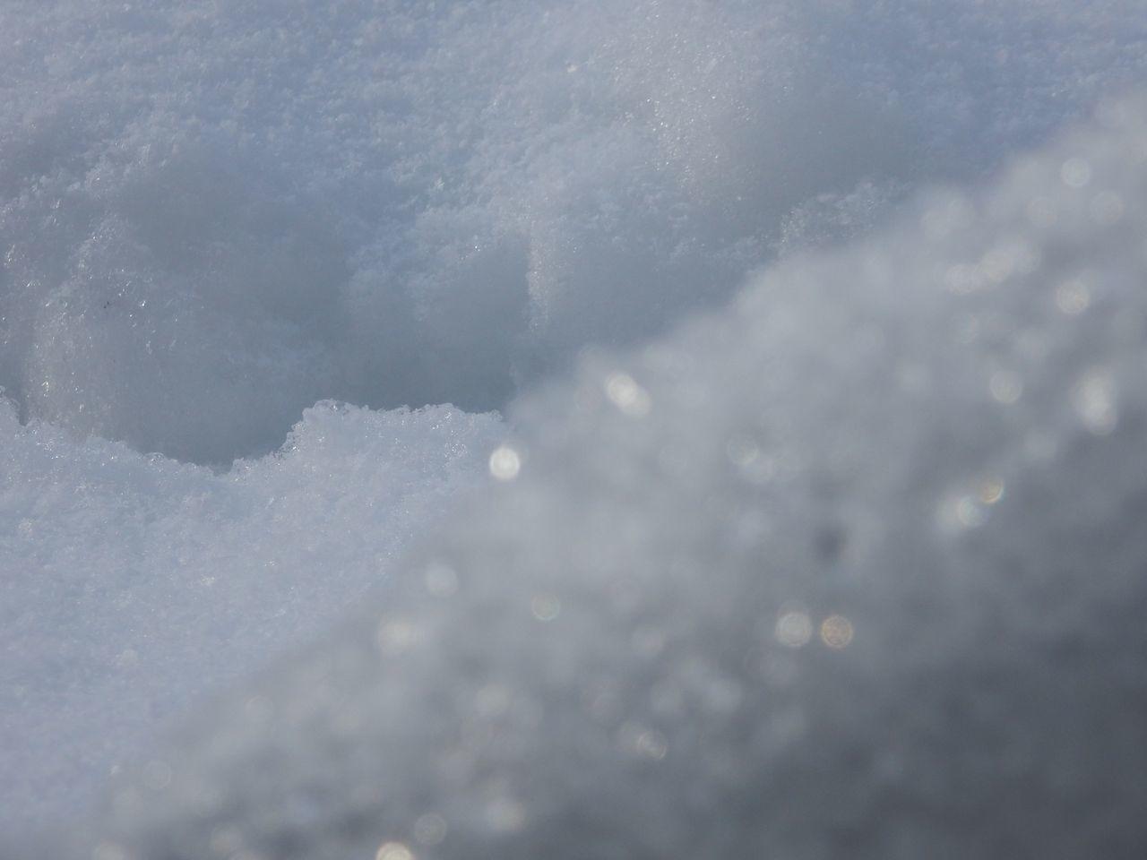 真冬日に雪がとける_c0025115_21410250.jpg