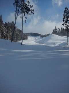 Itoshiro backcountry paradise !!_c0359615_20013657.jpg