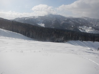 Itoshiro backcountry paradise !!_c0359615_20015960.jpg