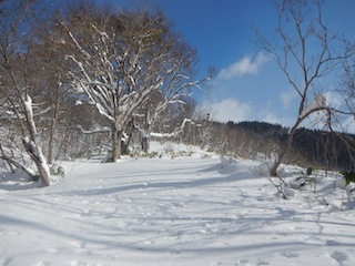 Itoshiro backcountry paradise !!_c0359615_20021466.jpg