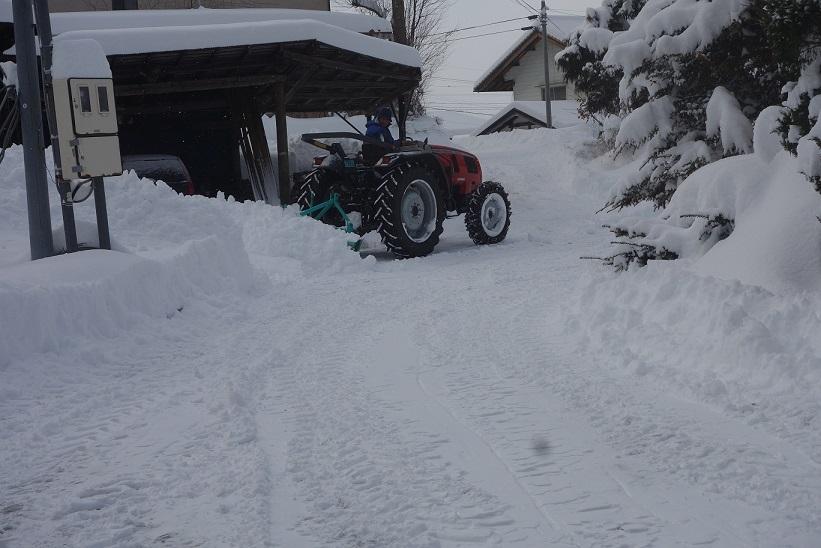 雪が降りました_e0112417_22310042.jpg