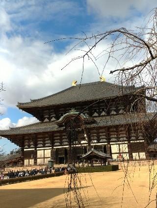 奈良までドライブに行ってきました_c0036138_23321936.jpg