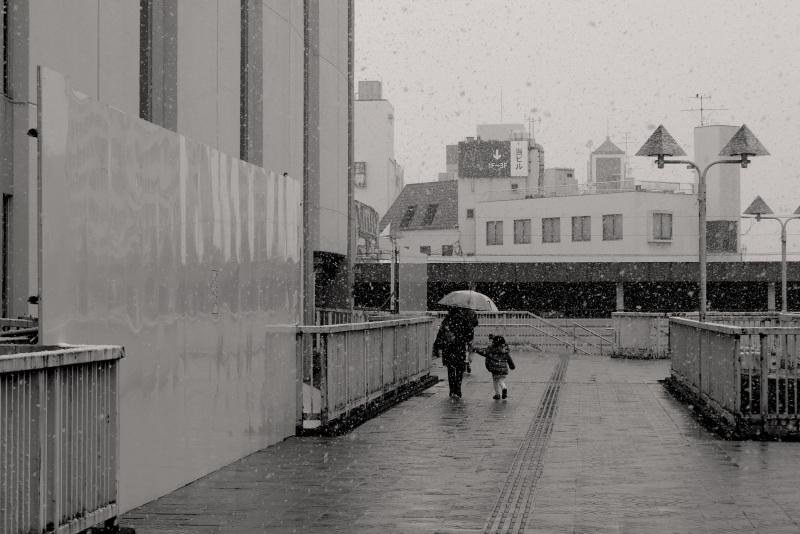 雪の日_c0181552_09470152.jpg