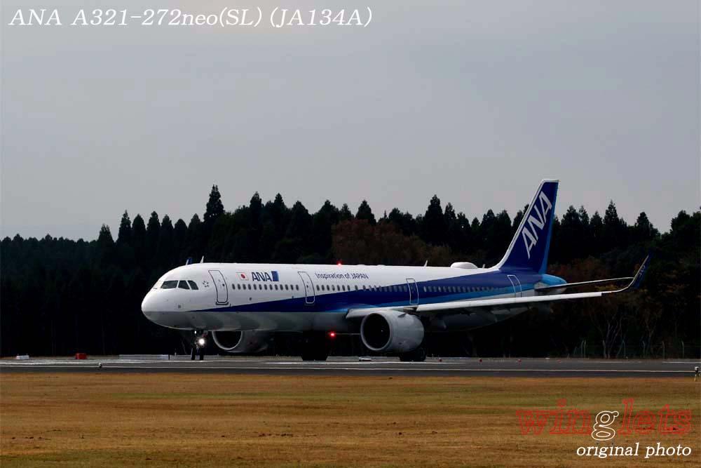 '19年 鹿児島空港レポート・・・ANA/JA134A_f0352866_15231164.jpg