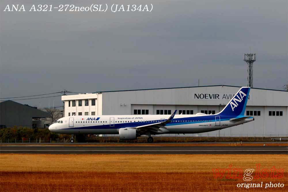 '19年 鹿児島空港レポート・・・ANA/JA134A_f0352866_1523145.jpg