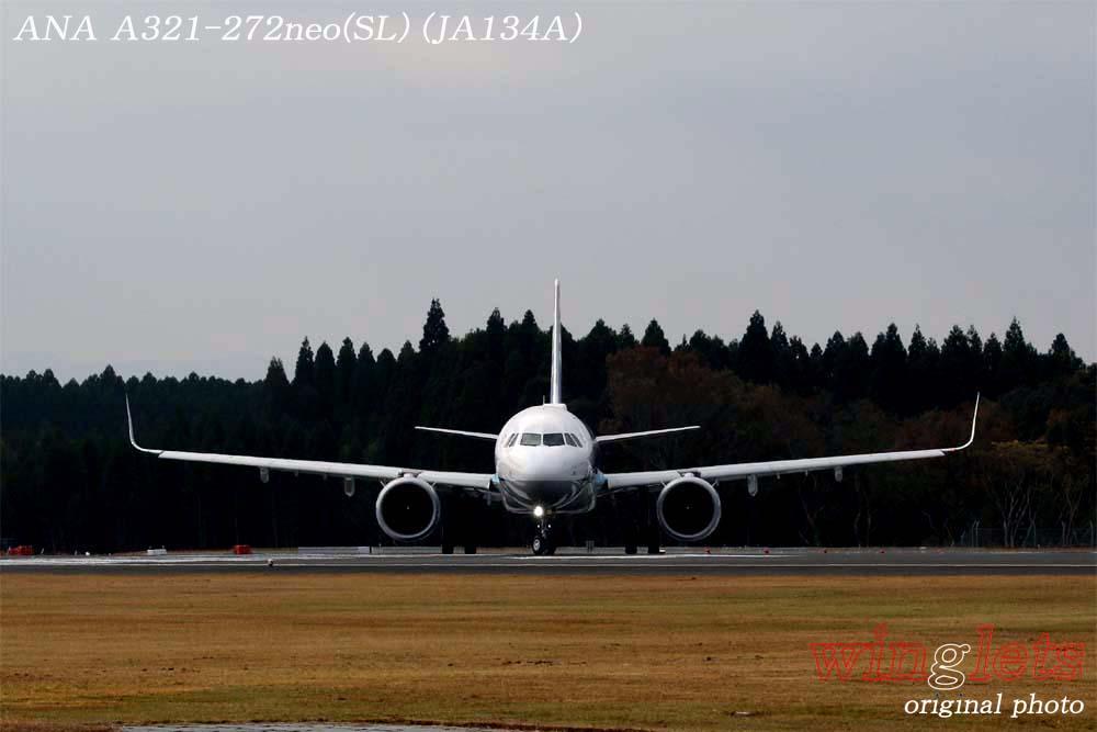 '19年 鹿児島空港レポート・・・ANA/JA134A_f0352866_15232114.jpg