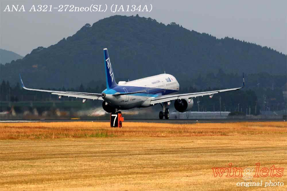 '19年 鹿児島空港レポート・・・ANA/JA134A_f0352866_1523299.jpg