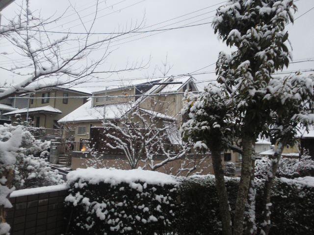 0℃ ⛄ 雪の朝「どうなる?どうする?川西病院」東谷公民館10時から 🕔_f0061067_7251148.jpg