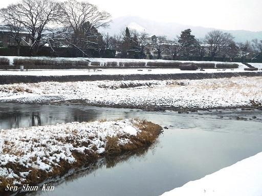 雪景色 2019年1月27日_a0164068_23253140.jpg