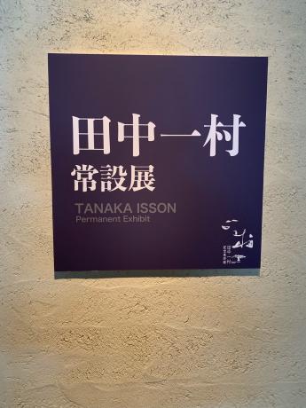 奄美大島上陸❗️_a0077071_15271776.jpg