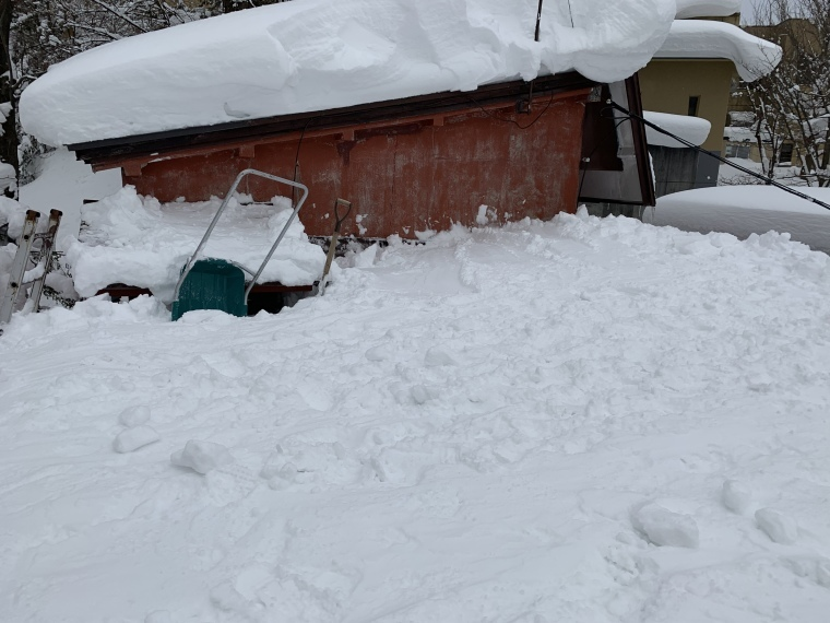 屋根の雪降ろし☃️_b0185375_16392040.jpeg