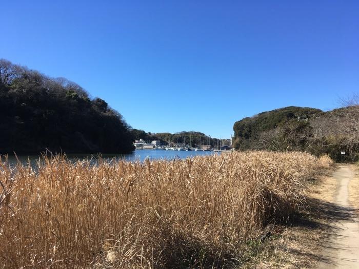 2019.1.26-27 三浦半島を南下するラン旅_b0219778_19394399.jpg