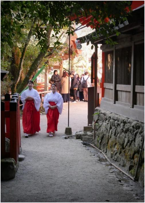 < 上賀茂神社の巫女さん  >_c0036080_23483847.jpg