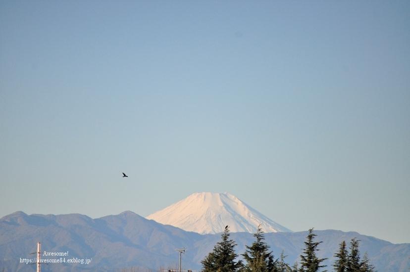 富士山を愛でに~🗻_e0359481_08403688.jpg